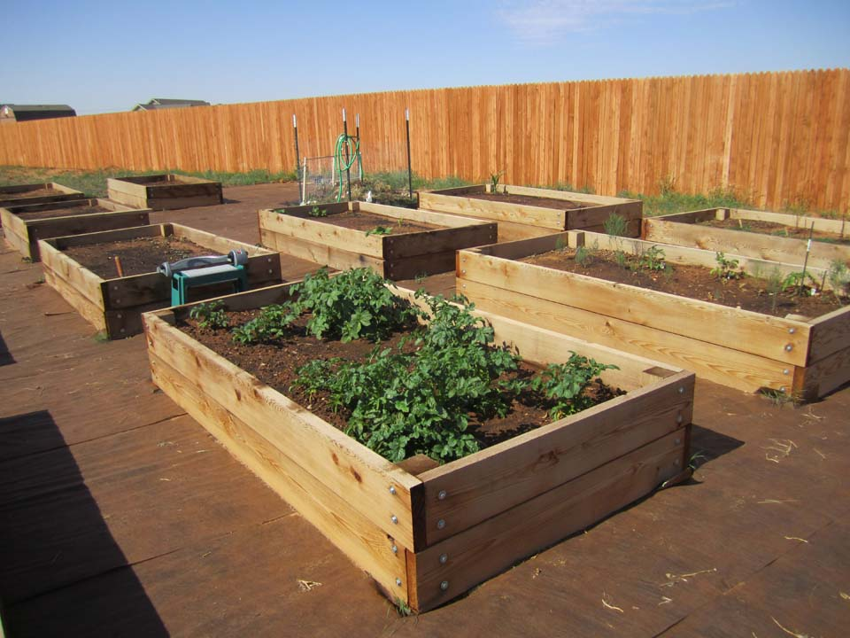 Joy Blooms-Building Jan's Raised Bed Garden - Page 2 on 2 x 8 retaining wall, 2 x 6 raised garden bed, 2 ft raised garden bed, 4 x 8 raised garden bed, 2 x 4 raised garden bed,